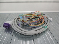 GE ICG trunk cable+ lead wire
