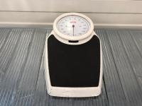 Seca, 761, Scale